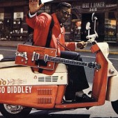 Bo DiDDLey RoaDRuNNeR -HoNey