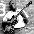 The HoWLiN' WoLF SToRy ... et celle de KiLLiNG FLooR